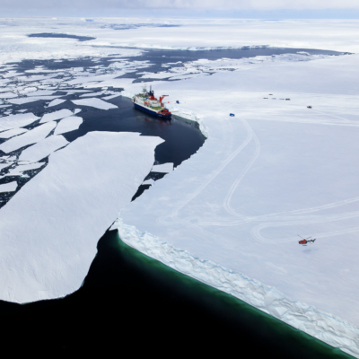 In the Atka Bay at the ice shelf